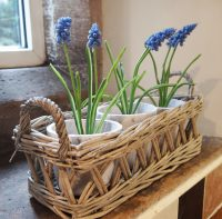 3 Terra Pots in a Willow Basket by Parlane